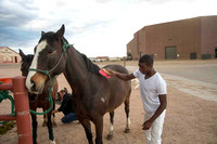 Colorado State University Horse Polo Team Readies for Nationals