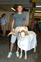 Livestock Medicine at Colorado State University