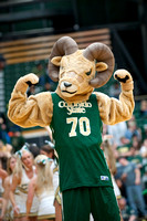 Cam the Ram at Colorado State Universlty