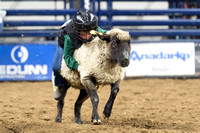 Colorado State University at the National Western Stock Show